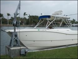 boat lift davit - Davit Master 5500 lbs electric direct drive seawall mounted davit